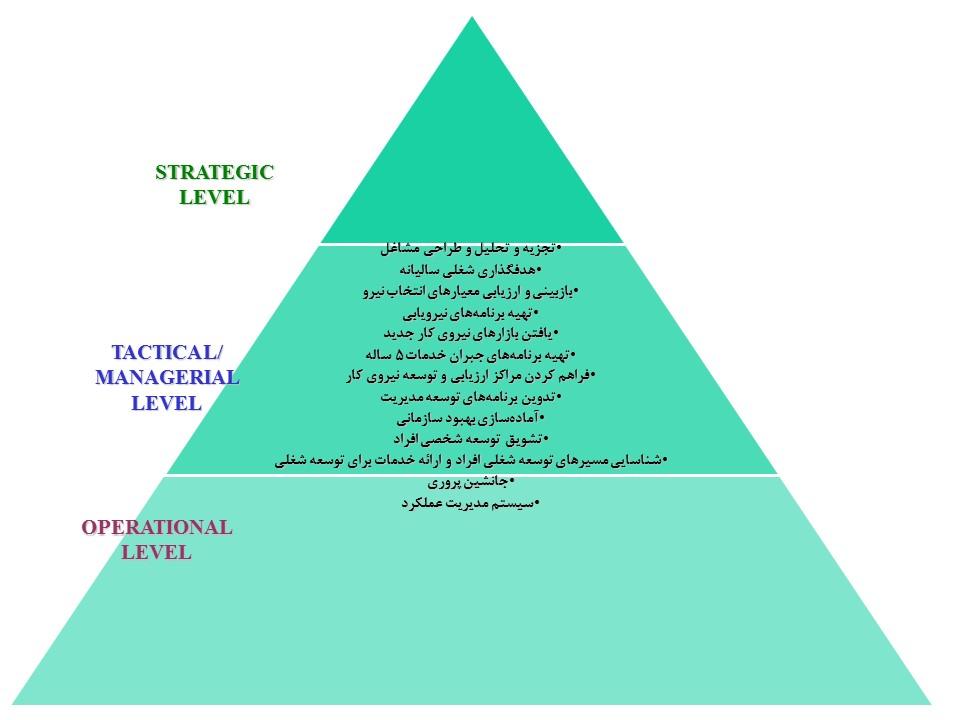 نقشهای واحد مدیریت منابع انسانی